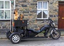 chien-moto-BergerTrike