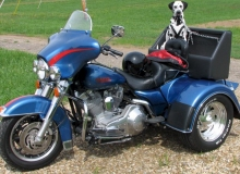 chien-moto-Dalmatien-HD