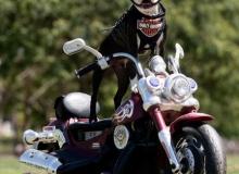 moto-chien-biker