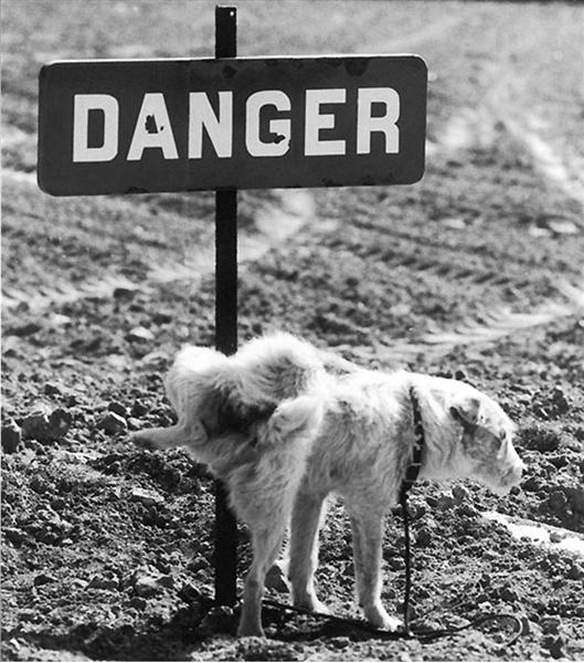 panneau signalisation danger